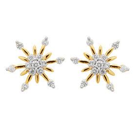 Flower Pattern Earrings - BAPS231ER