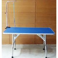 STAINLESS STEEL GROOMING TABLE 4FTX2FT