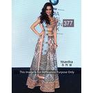 Kmozi Shardha Bmw Designer Lehenga Choli, light pink