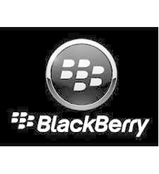 BLACKBERRY Q10 ACCESSORIES PACK,  white