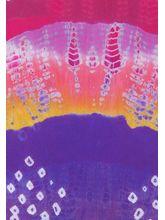 Veera Paridhaan Georgette Printed Womens Dupatta (VP0002_ M), multicolor