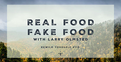 Real food, fake food by Larry Olmsted